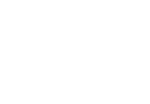 Centaur Group